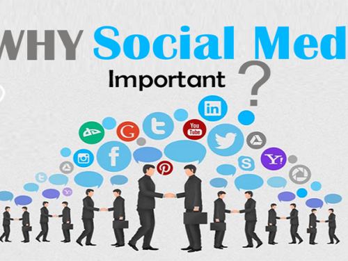 How Important is Social Media?