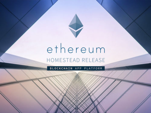 Why programmers love Ethereum?
